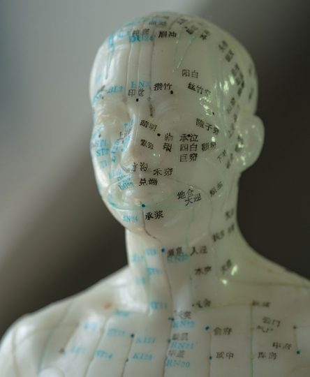 head with meridian lines showing emotional freedom technique